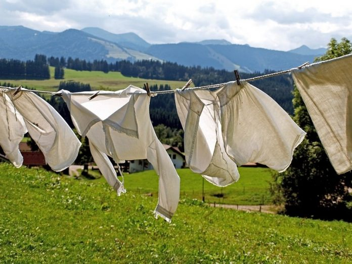 Green tip: Do your laundry yourself with ivy!     Alsagarden